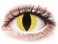 Kontaktne leće Maxvue Vision - ColourVUE Crazy Lens - Cat Eye - bez dioptrije (2 kom leća)