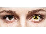 ColourVUE Crazy Lens - Smiley - bez dioptrije (2 kom leća)