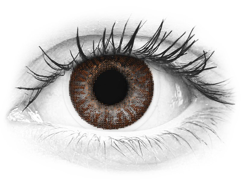 TopVue Color - Brown - nedioptrijske (2 kom leća) - TopVue Color - Brown - nedioptrijske (2 kom leća)