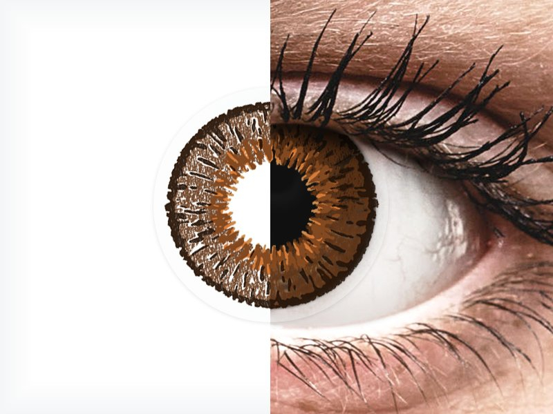 Expressions Colors Brown - nedioptrijske (1 leća) - Expressions Colors Brown - nedioptrijske (1 leća)