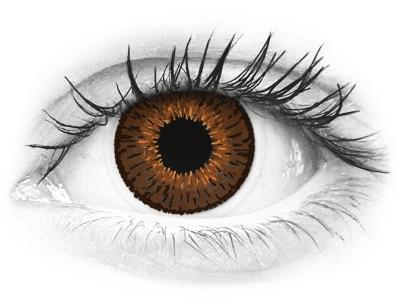 Expressions Colors Brown - dioptrijske (1 leća)