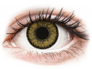 Smeđe kontaktne leće - dioptrijske - SofLens Natural Colors Dark Hazel - dioptrijske (2 kom leća)
