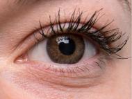 TopVue Daily Color - dioptrijske (10 kom leća) - Brown on grey eye